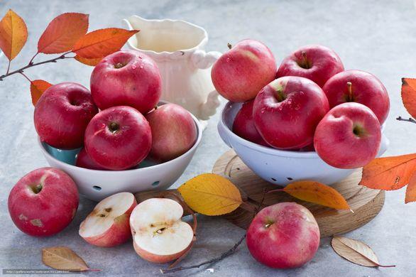 Fête de la pomme et des cucurbitacées